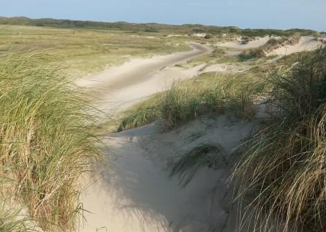 ferienwohnungenCarpe-Diem-Texel-2